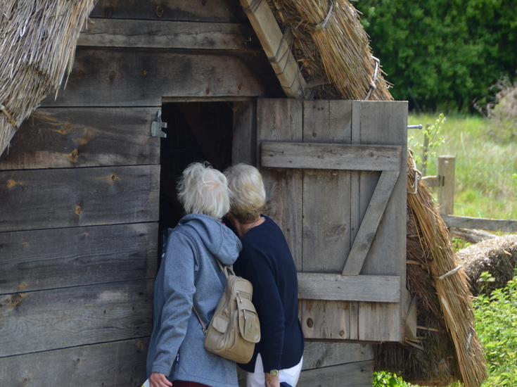 Exploring the Anglo-Saxon Village